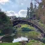 Japanese Garden - 2